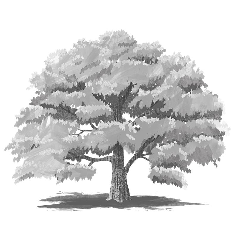 숲매거진 FINAL 1 큰나무 레이어정리 72dpi 800px