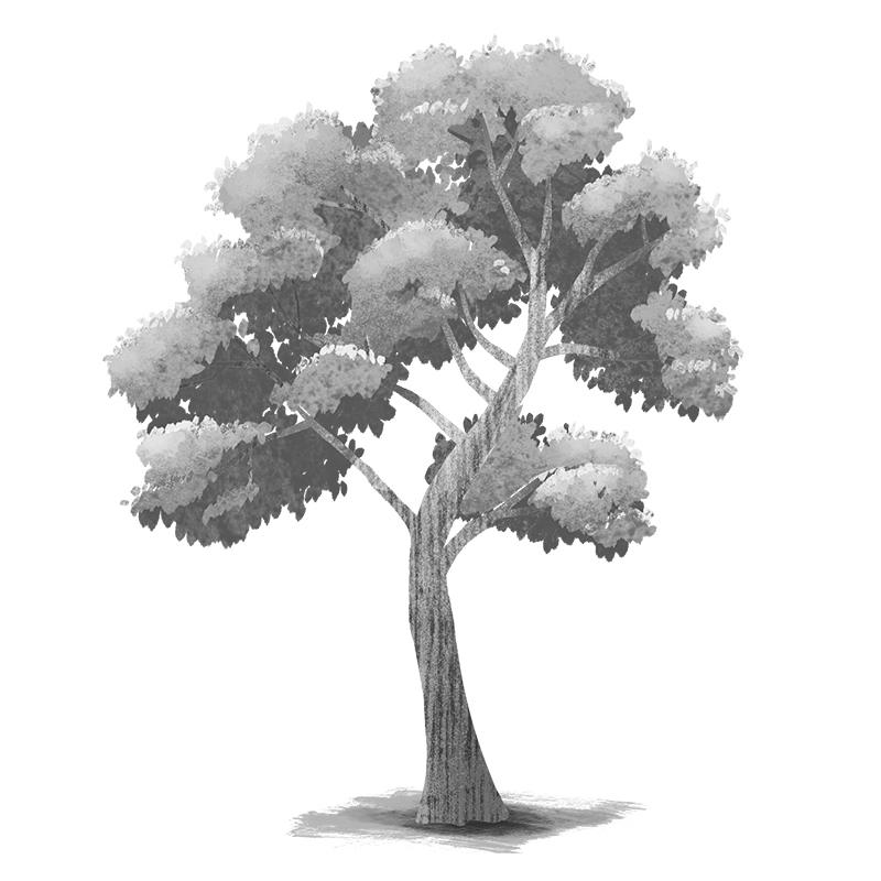 숲매거진 FINAL 2 큰나무2 레이어정리 72dpi 800px